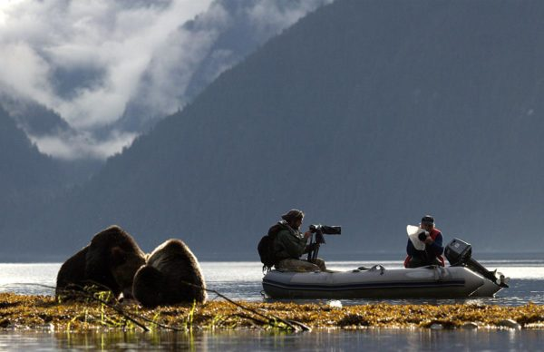 Two people in a raft viewing two bears
