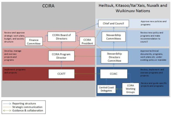 A diagram that shows how CCIRA is governed