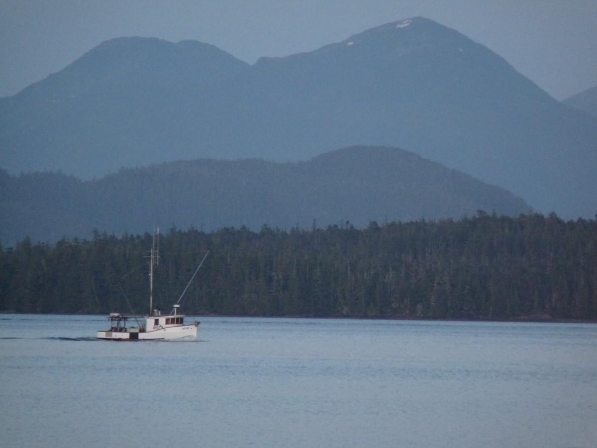 A fishing boat on the water with mountains in the background