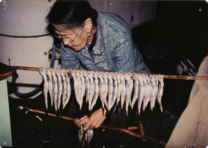 An Nuxalk Elder putting eulachon on sticks