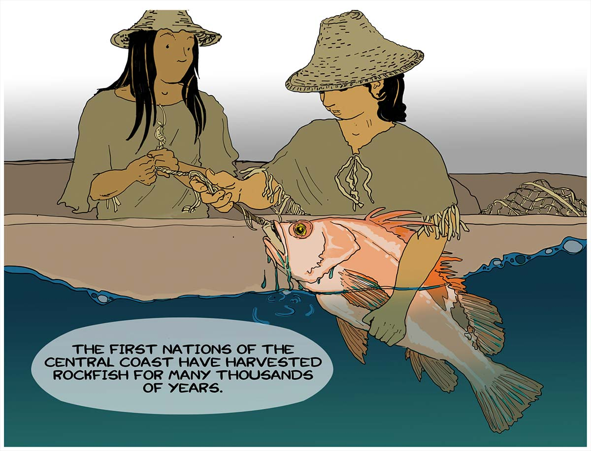 The First Nations of the Central Coast have harvested rockfish for many thousands of year.