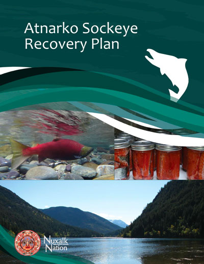 Cover page of the Atnarko Sockeye Recovery Plan