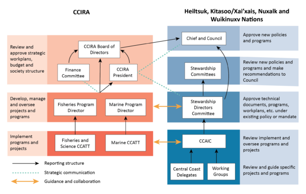 A diagram that shows how CCIRA is governed - updated 2020
