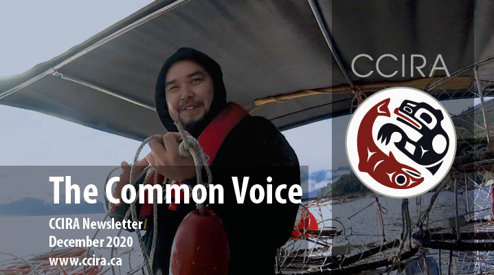 Common Voice - December 2020
